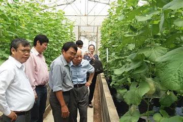 Phát triển bền vững với nông nghiệp công nghệ cao