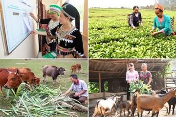Giai đoạn 2021-2025 Đắk Lắk đặt mục tiêu giảm tỷ lệ hộ nghèo bình quân hàng năm từ 1,5 - 2%