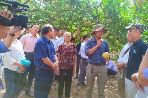 Viện Nghiên cứu Rau quả (FAVRI): 30 năm đồng hành cùng bà con nông dân