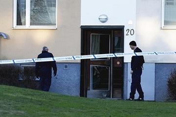 Thụy Điển: Người phụ nữ nhốt chính con trai mình trong gần 30 năm