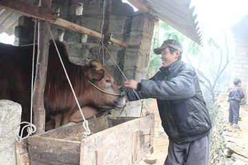 Lạng Sơn: Huyện Lộc Bình tổ chức tập huấn quy trình rà soát hộ nghèo, hộ cận nghèo năm 2020
