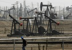 Khi nào thế giới phục hồi nhu cầu về dầu mỏ?