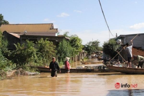 Mưa lũ gây thiệt hại hàng ngàn tấn cá tại Đắk Lắk và Đắk Nông