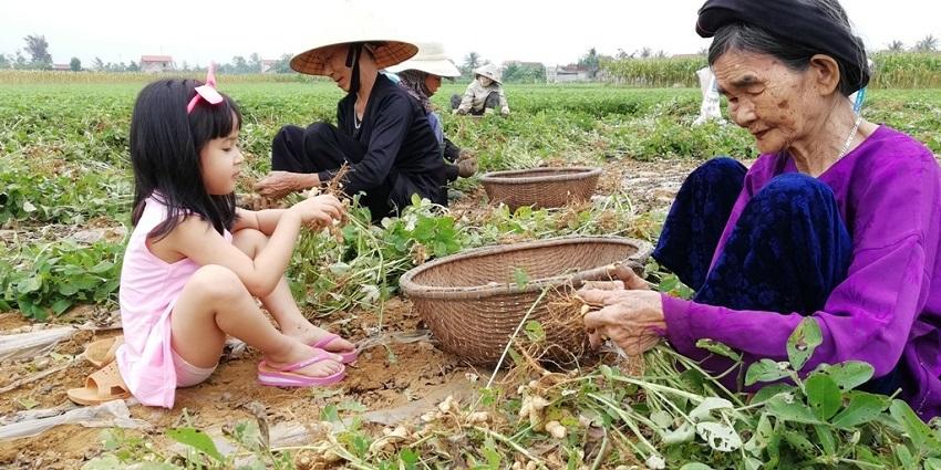 Nghệ An: Ứng dụng khoa học công nghệ trong chế biến nông, hải sản
