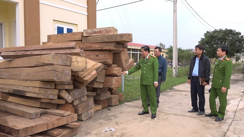 Quảng Bình: Tạm giữ nhiều đối tượng phá rừng quy mô lớn