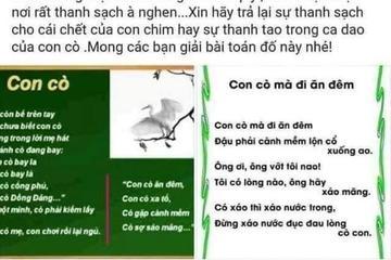 Vụ nữ sinh An Giang nghi tự tử: Có đình chỉ giáo viên viết lời lẽ vô cảm trên mạng xã hội?