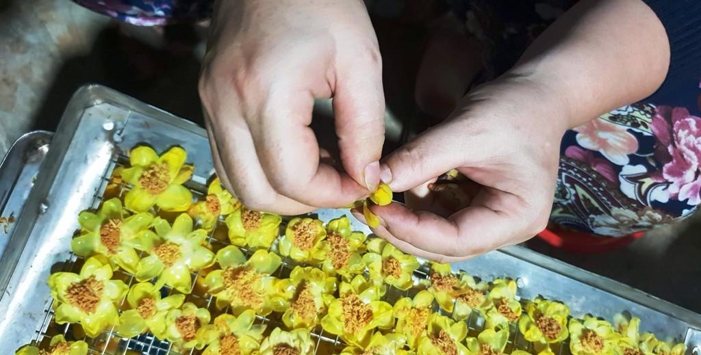 Ứng dụng công nghệ, phát triển chuỗi giá trị sản phẩm trà hoa vàng nức tiếng xứ Nghệ