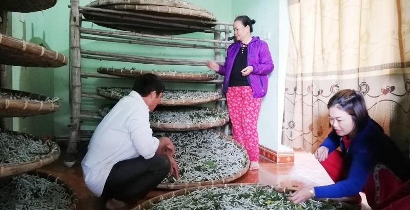 Nghệ An: Phát huy hiệu quả mô hình HTX, giữ gìn nghề truyền thống