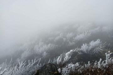 Bắc Bộ rét đậm rét hại, vùng núi cao có băng