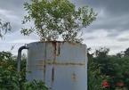Nhà máy nước chục tỷ bỏ hoang phế vì lý do khó tin
