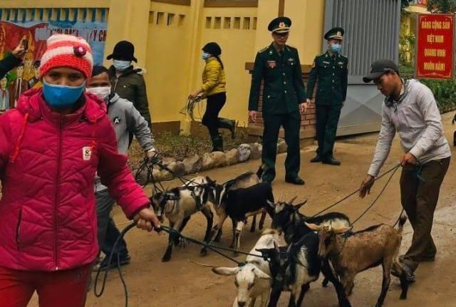 Hỗ trợ con giống, tạo sinh kế cho người dân vùng cao Quảng Trị bị thiệt hại do mưa lũ