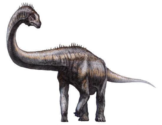 Phát hiện gần 100 dấu chân khủng long to lớn ở Tây Tạng