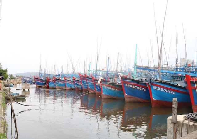 Bình Định,biển đảo