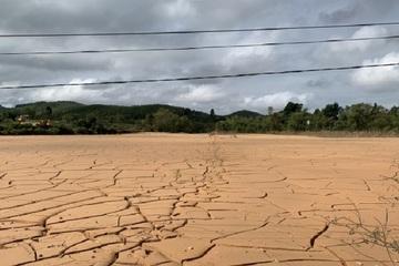 """Quảng Bình: Mưa lũ lịch sử, bùn cát """"lấp"""" ruộng dày hàng mét, nông dân khó canh tác"""