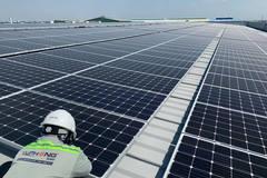 Hậu Giang có nhiều tiềm năng phát triển điện mặt trời kết hợp nông nghiệp công nghệ cao