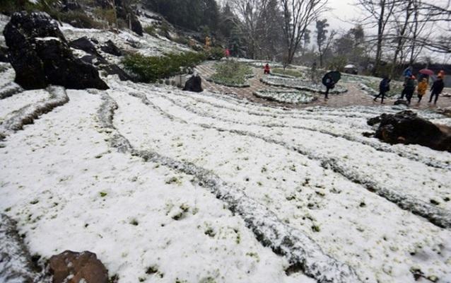 Lập các đoàn công tác kiểm tra, đôn đốc công tác phòng chống rét hại ở vùng núi