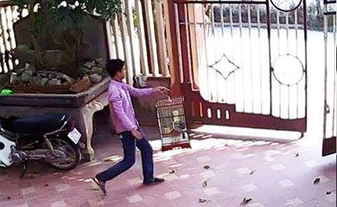 Con nghiện đi trộm chim, lấy cả giày vải trong nhà dân