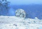 Ngọn lửa than lâu đời đã cháy trong 6.000 năm