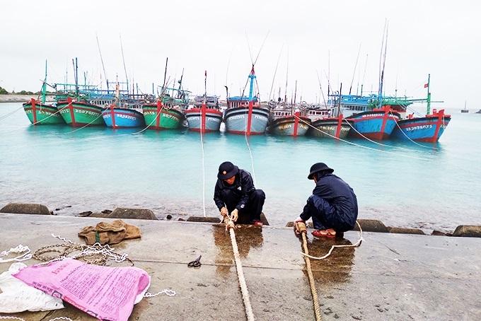 Gần 600 ngư dân vào tránh bão số 14 tại huyện đảo Trường Sa