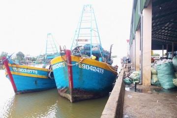 Tiền Giang: Khẩn trương phòng chống bão số 14, hơn 300 tàu thuyền đến nơi an toàn