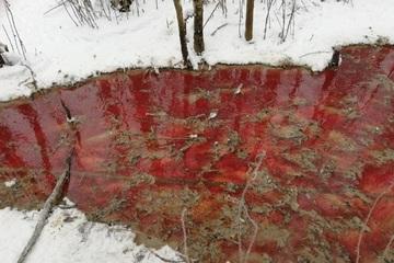 Nguyên nhân gì khiến 'dòng sông máu' xuất hiện ở Nga?