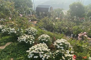 """Mua đất làm nhà vườn đẹp, sinh lời """"ăn nhau"""" ở điểm này, chia sẻ của một ông chủ thành công nhiều năm"""