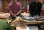 Đắk Nông: Bắt Giám đốc và nhân viên Công ty mua bán nợ Kim Ngân