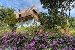 Mua đất vườn làm nhà nghỉ dưỡng ngoại thành gặp vô vàn rủi ro