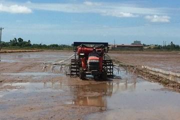 Nhà khoa học Việt sáng chế gieo sạ lúa kết hợp bón phân theo hàng