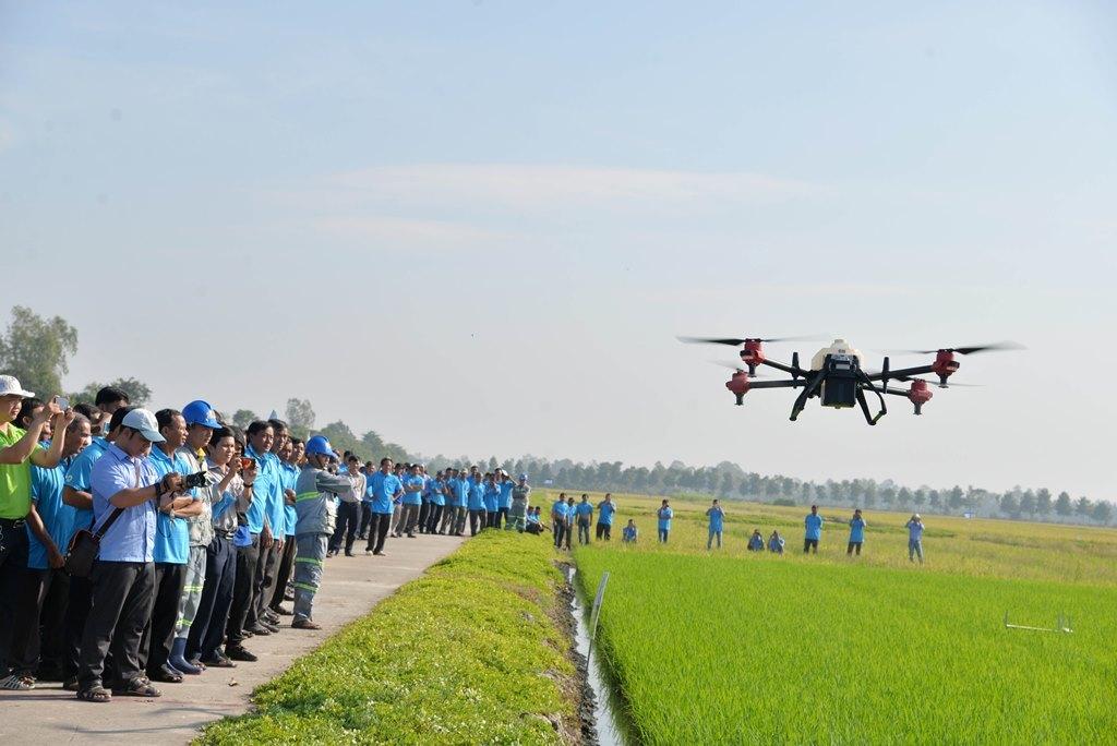 Hỗ trợ Tập đoàn Lộc Trời ứng dụng AI đẩy mạnh phát triển nông nghiệp thông minh