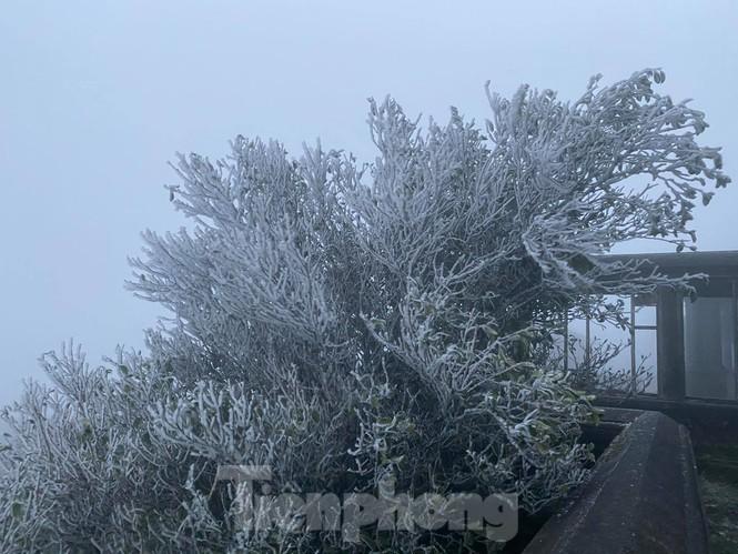 Bắc Bộ tiếp tục giảm nhiệt độ, đỉnh Mẫu Sơn -1,4 độ C