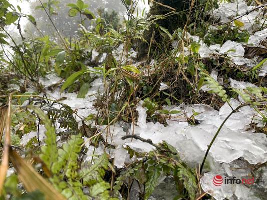 Sa Pa -4 độ C, nhiều người bất chấp rét buốt lên đỉnh Fansipan chờ tuyết rơi