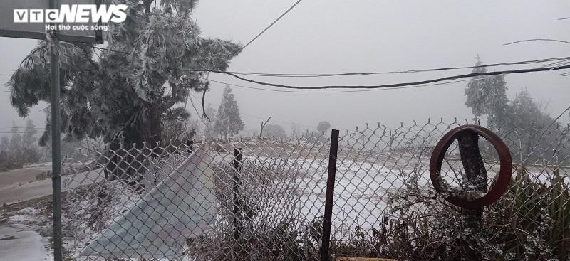 Lào Cai: Tuyết phủ trắng xóa, Y Tý đẹp như ở châu Âu