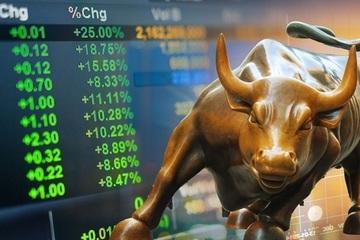 """Bùng nổ đầu tư chứng khoán cá nhân, cẩn thận quay đầu """"đạp"""" nhau tháo chạy"""