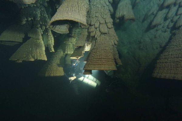 Bí ẩn hang động chứa đầy 'chuông tử thần' ở Mexico