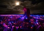 Cánh đồng phát sáng nhiều màu sắc kỳ lạ ở Hà Lan
