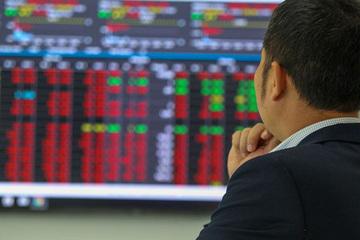 """Chứng khoán đảo chiều rớt mạnh, nhà đầu tư mới bị chê non nớt, """"yếu tim"""""""
