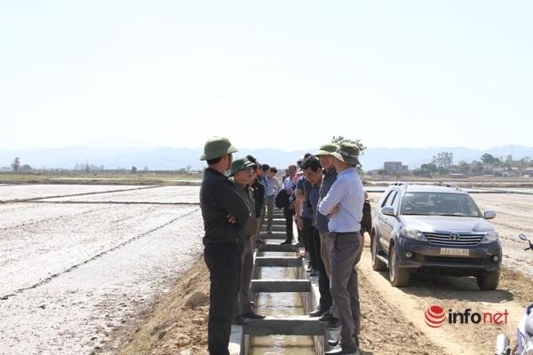 Chuyện lạ ở Đắk Nông: Cánh đồng 'khát' khô bên con kênh 'chống hạn'