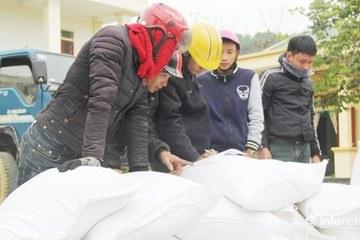 Nghệ An phân bổ hơn 727 tấn gạo hỗ trợ người nghèo Tết Nguyên đán 2021