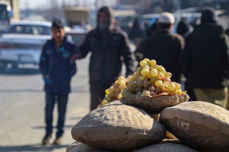Kinh ngạc kỹ thuật bảo quản trái cây tươi có một không hai ở Afghanistan