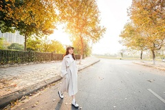 """Con đường lá vàng lãng mạn như phim Hàn thu hút giới trẻ Hà Nội đến """"sống ảo"""""""