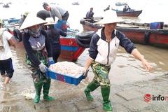 Gần Tết, trúng đậm mùa moi biển, ngư dân xứ Thanh thu tiền triệu mỗi ngày