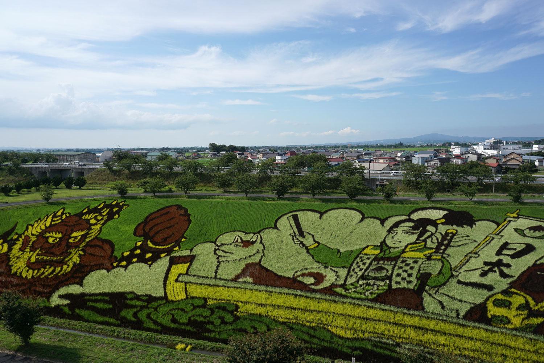 Ngôi làng Nhật Bản sở hữu nghệ thuật trên cánh đồng lúa công phu nhất thế giới