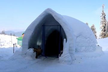 Căn lều đắp toàn tuyết lớn nhất châu Á
