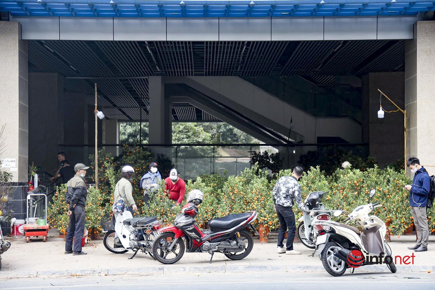 Nhà ga đường sắt trên cao Hà Nội biến thành chợ quất, đào cảnh nhộn nhịp