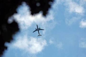 Sống sót thần kỳ sau hành trình bám càng máy bay từ London đến Hà Lan