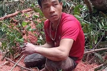 Đắk Lắk: Bắt quả tang kẻ đốn trộm 11 cây gỗ cổ thụ ngày giáp Tết