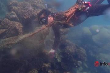 Cứu chữa một con rùa tiêu tốn 400 triệu đồng, lặn cả ngày dưới đáy biển làm điều hiếm ai dám