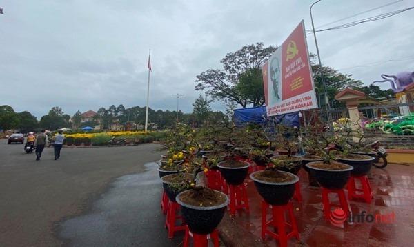 Đắk Lắk: Chiều 29 Tết chợ hoa vẫn vắng hiu hắt, tiểu thương 'khóc ròng'