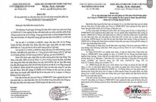 Tranh cãi quanh vụ phát hiện khai thác gỗ trái phép ở Đắk Lắk
